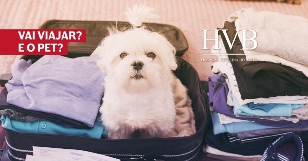 Vai viajar? E o pet?