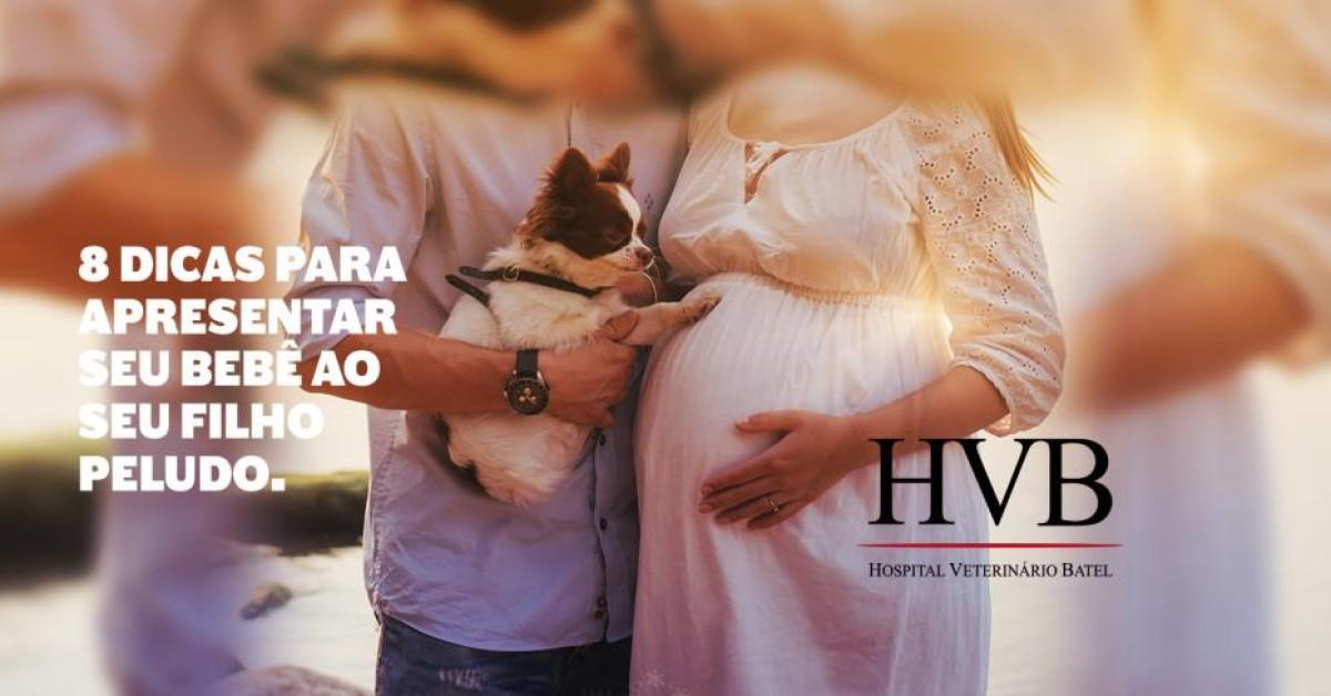8 Dicas para apresentar seu bebê ao seu filho peludo
